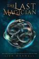 Go to record The last magician