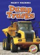 Go to record Dump trucks