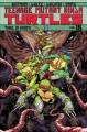 Go to record Teenage Mutant Ninja Turtles. Volume 18, Trial of Krang