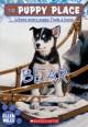 Go to record Bear