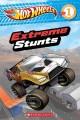 Go to record Extreme stunts