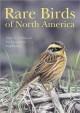 Go to record Rare birds of North America
