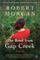 Go to record The road from Gap Creek : a novel